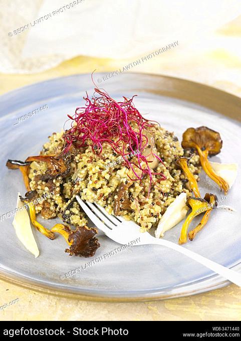 risotto trio de quinoa / quinoa trio risotto
