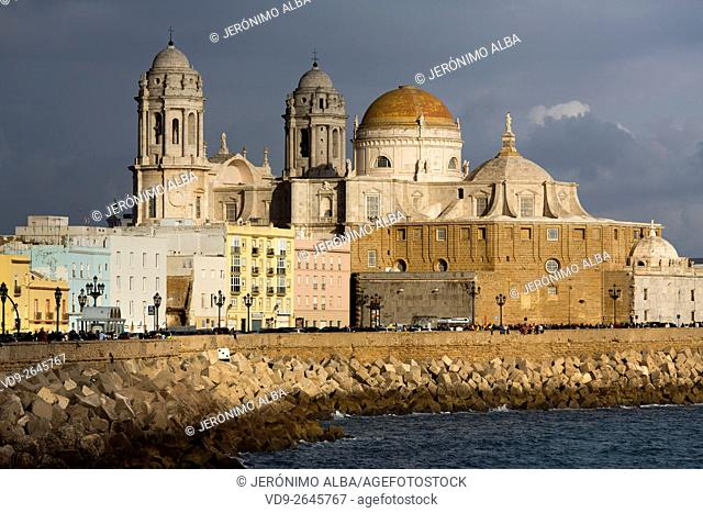 Barrio de la Viña. Seafront, historic center and cathedral of Santa Cruz. Cadiz City, Andalusia Spain. Europe