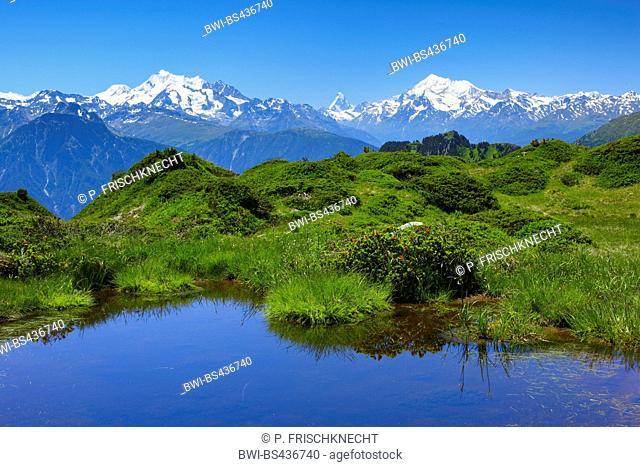alpine lake in the Suisse Alps, Mischabelgruppe, Matterhorn, Weisshorn, view from Hohfluh, Switzerland, Valais