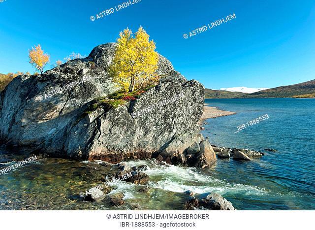 Gjevilvatnet lake and autumn colours, Trollheimen, Norway, Scandinavia, Europe