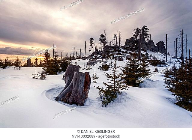 Winter landscape at Dreisessel, Haidmühle, Bavarian Forest, Niederbayern, Bavaria, Germany