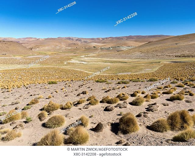 The Argentinian Altiplano along the Routa 51 between Antonio de los Cobres and Olcapato. South America, Argentina