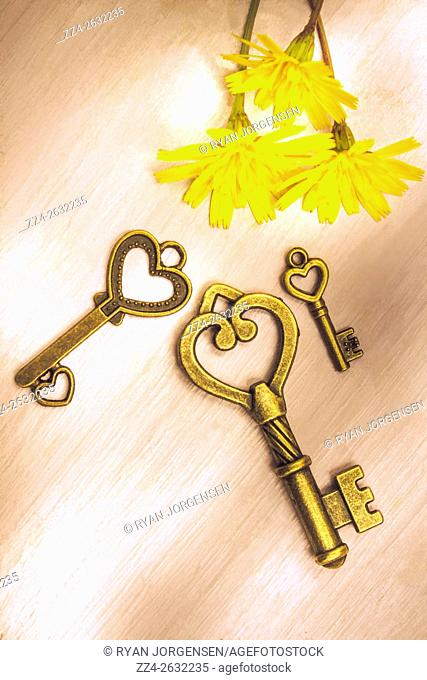 Close-up of three old-fashioned heart shaped keys with yellow flowers on wooden table. From above