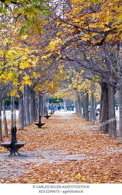 Spain, Madrid, El Retiro Park, autumn scene