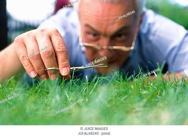 Man cutting grass with nail scissors