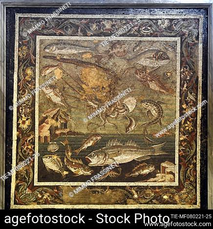 Mosaic with marine fauna, II-I century. B.C. The exhibition illustrates the relationship between Rome and Pompeii, from the Second Samnite War to the eruption...