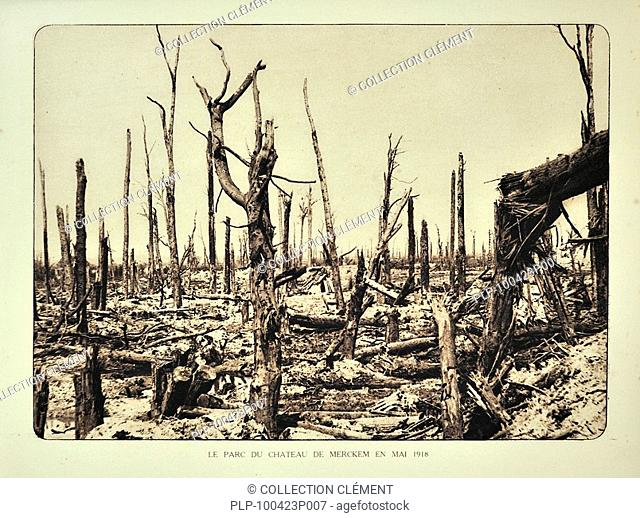 Broken trees after bombardment / shelling at the Merkem castle''s park in Flanders during the First World War, Belgium