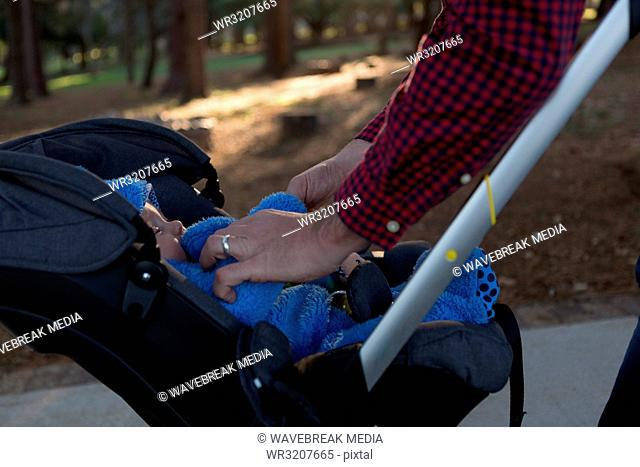 Father with his baby boy in a pram at park