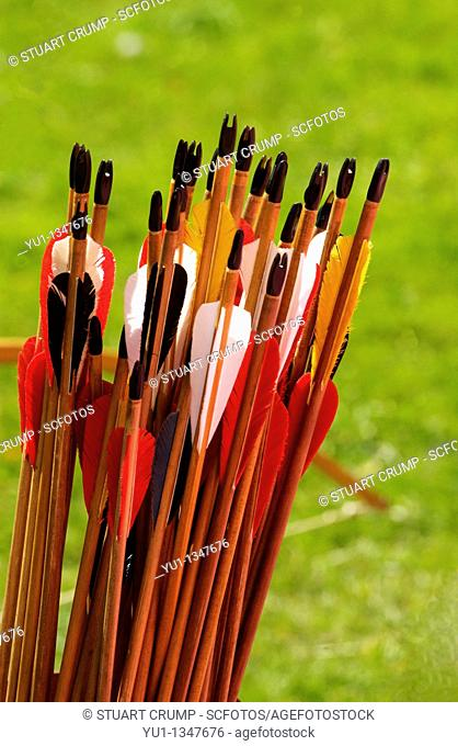 A collection of archers arrows with there fletchings