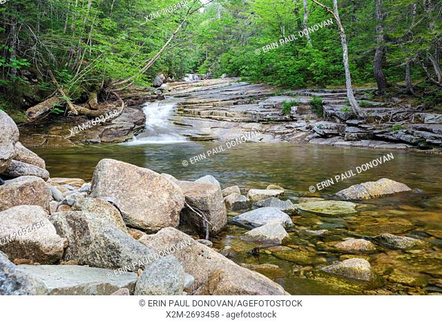 Fawn Pool in Harts Location, New Hampshire USA during the spring months. This pool is located just below Coliseum Falls along Bemis Brook