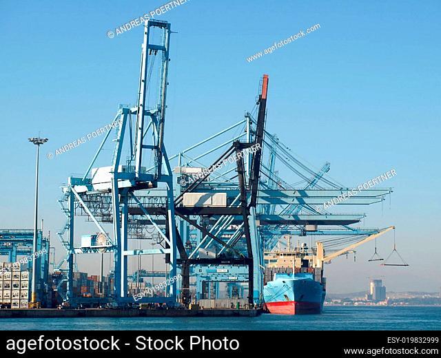 Containerkrähne