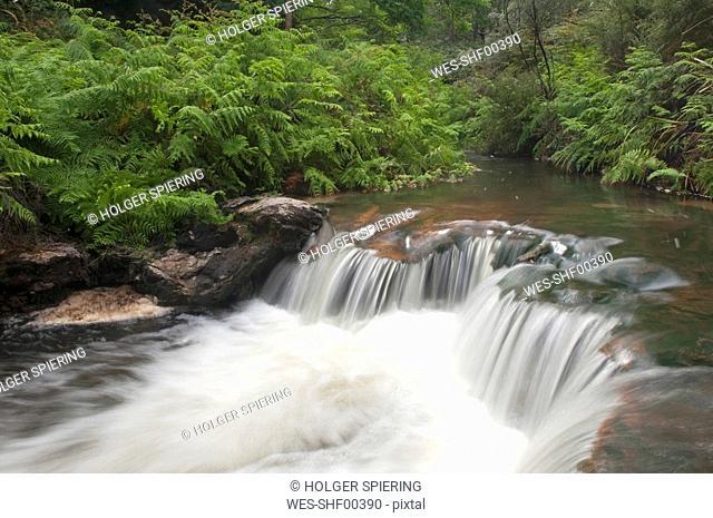 New Zealand, Rotorua, Kerosene Creek, waterfall