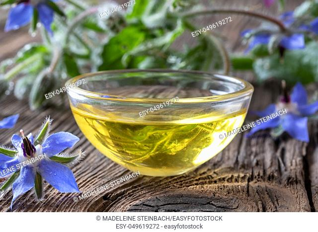 A bowl of borage oil with fresh blooming plant