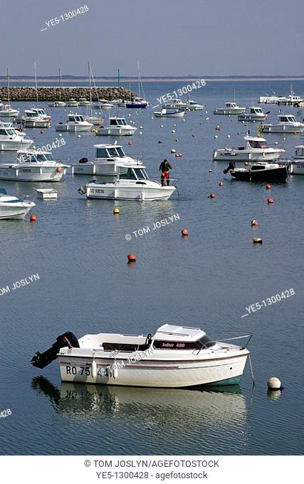 Boats moored in harbour, Jard-Sur-Mer, Pays de la Loire, Vendee, France