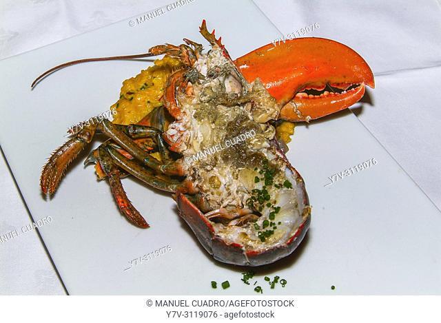 Plato de Bogavante asado al horno (baked lobster). Restaurante Bodegón Alejandro. San Sebastián-Donostia, Guipuzcoa, Basque Country, Spain