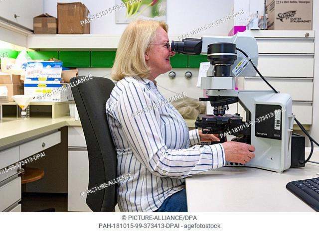 12 October 2018, Austria, Vienna: Professor Martina Weber works at the microscope in the laboratory of the Institute of Botany at the University of Zurich