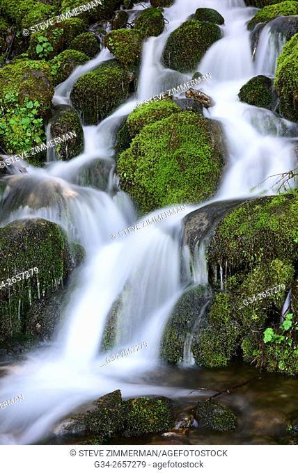 Quinault Falls