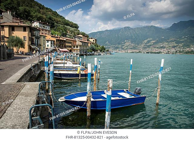 Boat moorings at town on lake island, Peschiera Maraglio, Monte Isola, Lago d'Iseo, Val Camonica, Central Alps, Brescia, Lombardy, Italy, July