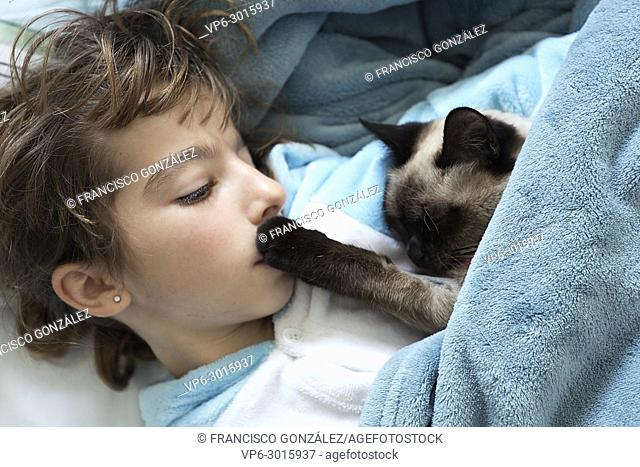 Little girl lying down on the bed with her cat on top. Horizontal shot with natural light