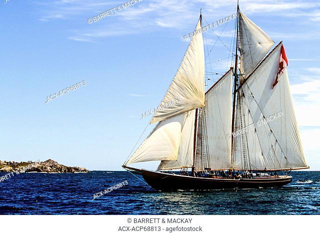 Tall ship Bluenose, Louisbourg, Cape Breton, Nova Scotia, Canada