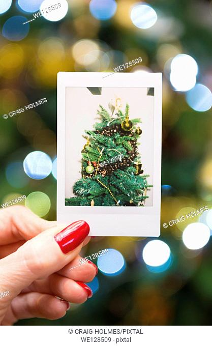 Woman holding an instant print of a christmas tree, in front of the tree
