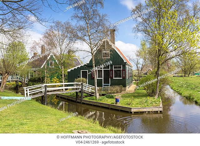 Traditional house, little canal and picturesque bridge in the historic village of Zaanse Schans, The Netherlands, Europe