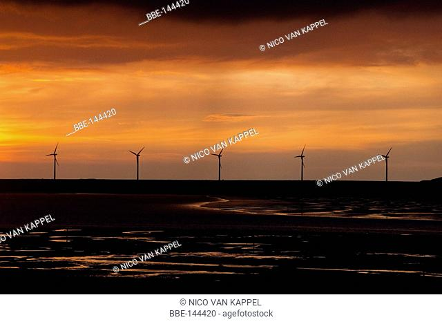 saltwater marsh along the dutch coast during summer with windturbines of the harbour of Rotterdam on the horizon