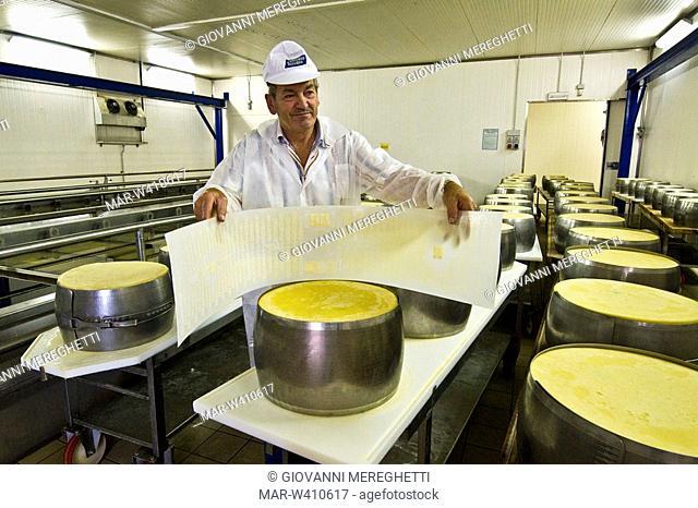 parmigiano reggiano, cooperativa casearia castelnovese, castelnuovo rangone, emilia romagna, italy