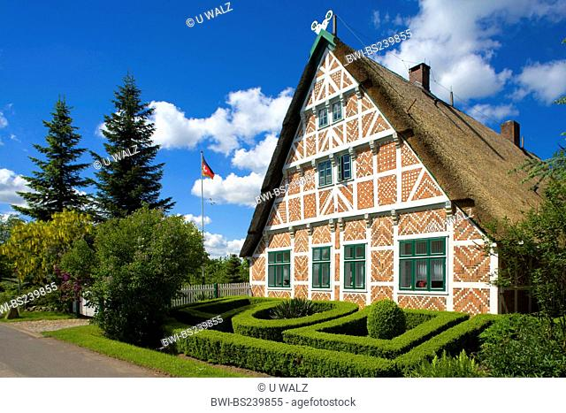 Timber-framed house with accurately cut boxwood formations in the front yard, Germany, Lower Saxony