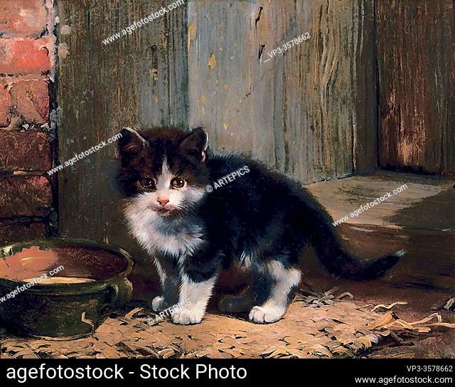 Adam II Julius - Kitten 1 - German School - 19th and Early 20th Century