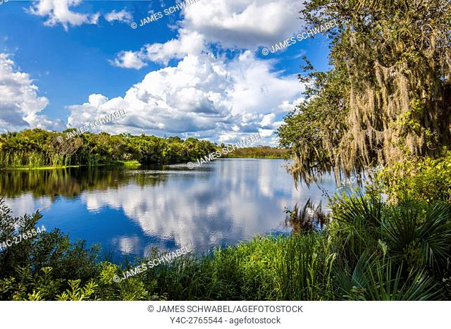 Deer Prairie Creek Preserve in Venice Florida