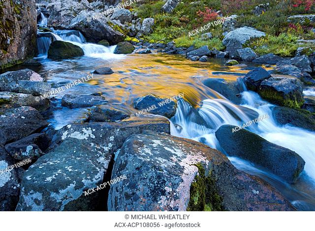 Stream, Mt. Baker-Snoqualmie National Forest, Washington State, USA