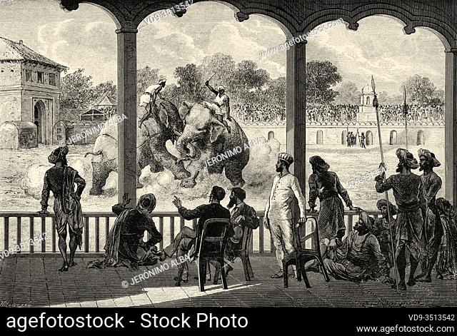 Elephant Fight at Vadodara (Baroda). Gujarat, India. Old engraving illustration from El Mundo en la Mano 1878