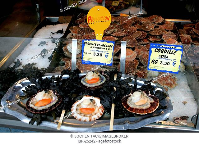 FRA, France, Normandy, Cherbourg: Scallops in a fish shop