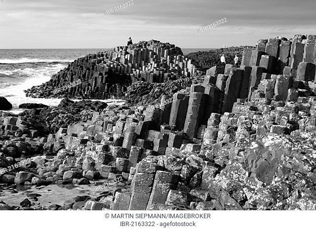Basalt columns, Giant's Causeway, Causeway Coast, County Antrim, Northern Ireland, Great Britain, Europe