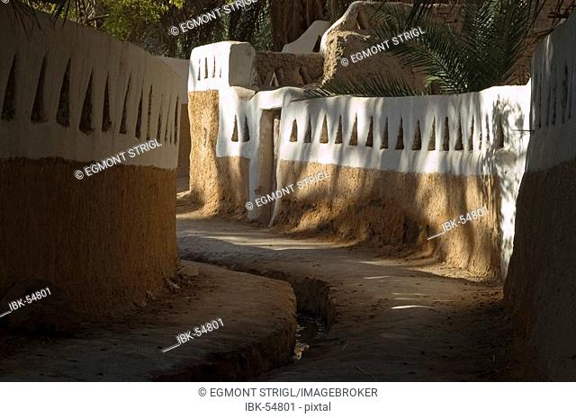 Palm garden at Ghadames, Ghadamis