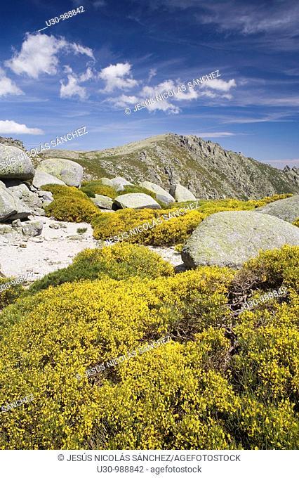 Summit of La Mira 2 341 m in the mountains of the Sierra de Gredos National Park  Navacepeda de Tormes  Ávila  Castilla y León  Spain
