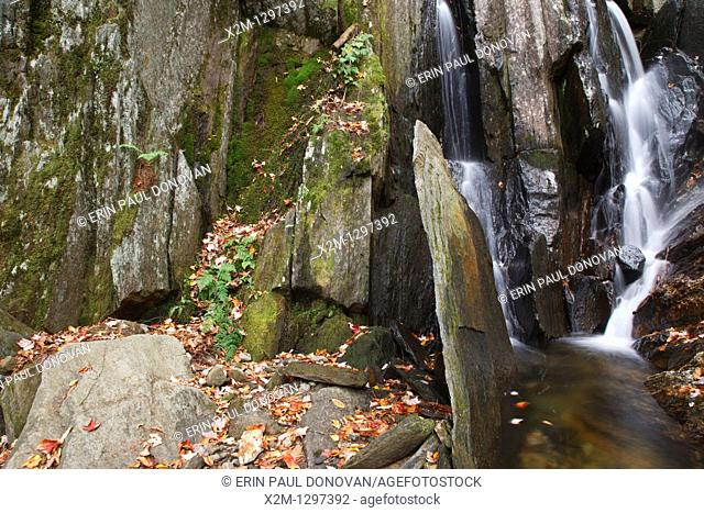 Tributary of the Cockermouth River during the autumn months in Groton, New Hampshire USA