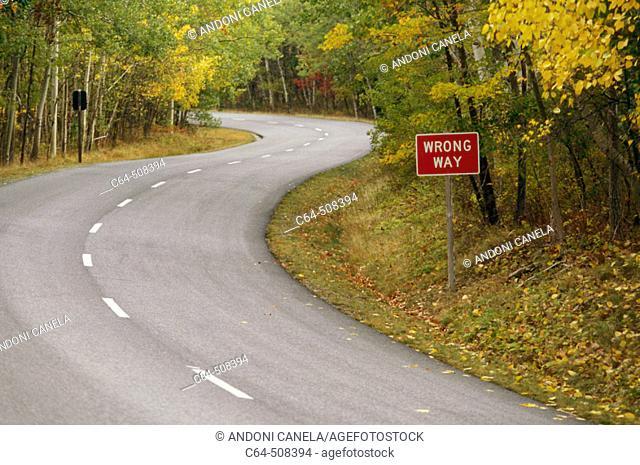 Acadia National Park. Maine, USA