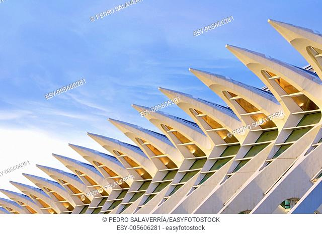 Facade of the Museum of Science, City of Arts and Sciences, Valencia, Spain. It was designed by Valencian architect Santiago Calatrava
