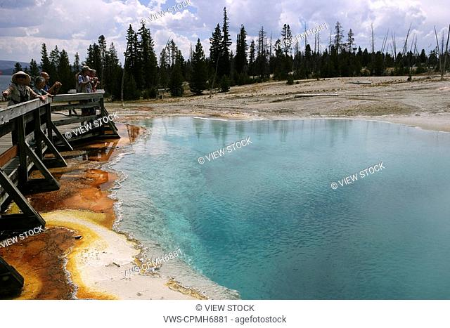 nature scene,yellowstone national park
