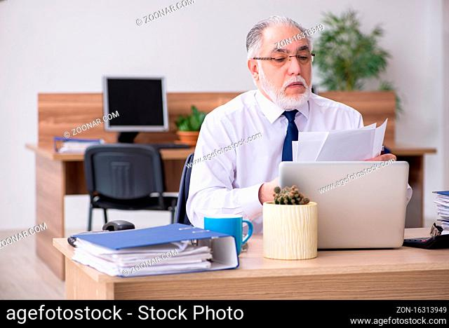 Old employee working in the office
