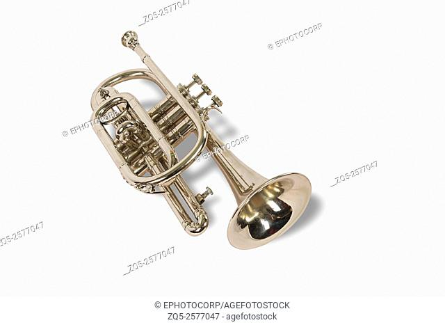Trumpet, A musical instrument. India