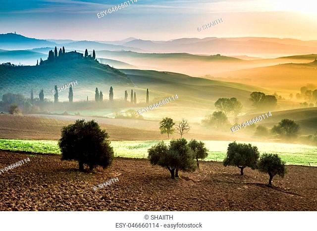 Gold and green fields in the valley at sunset, Tuscany