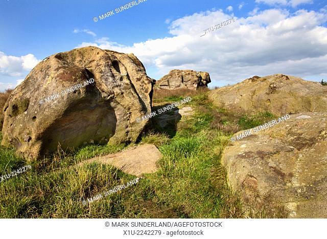 Little Alms Cliff near Beckwithshaw Harrogate North Yorkshire England