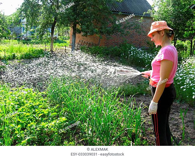 Hat watering kitchen garden Stock Photos and Images  72525b4ce78d
