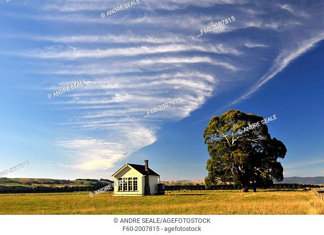 Farm house, tree and clouds, South Island, New Zealand