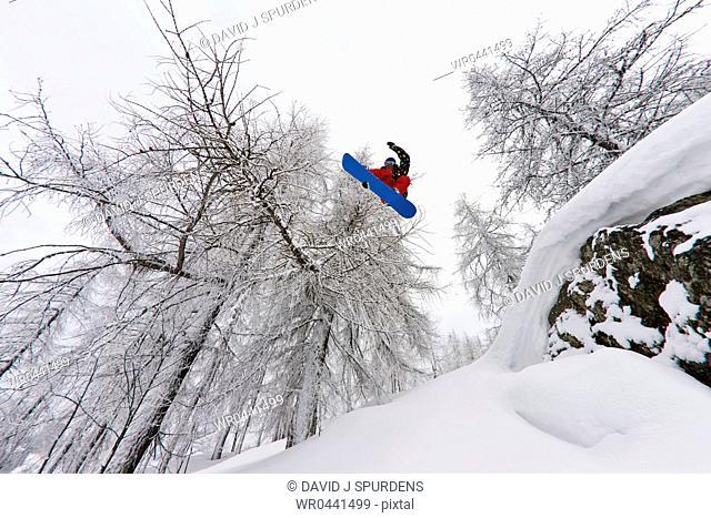 A snowboarder flying through a snowy forest