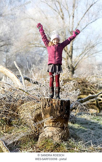 Portrait of happy girl with arms raised standing on tree trunk in winter