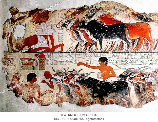 A fragment of a painting from the tomb of Nebamun